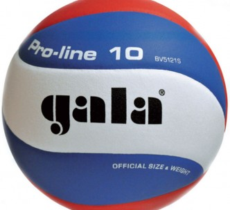 myach-voleybolnyiy-gala-training-10